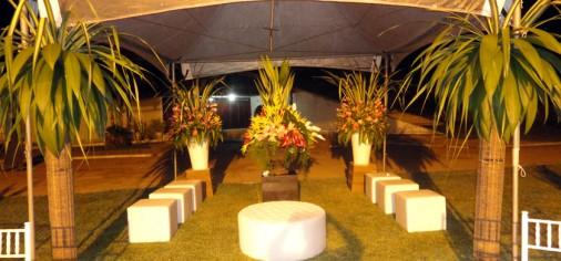 Ramos de Uma Grande Árvore – Lançamento em Arapiraca (Parte 1)